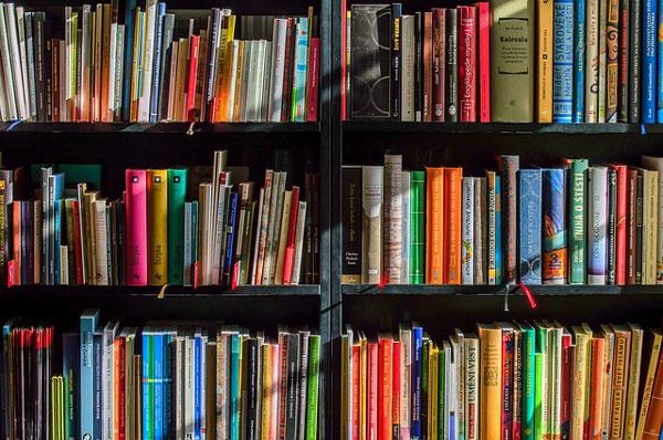 Flensburger Bücherbus weiterhin auf Erfolgstour – Fahrplanänderung ab 21.10.2019